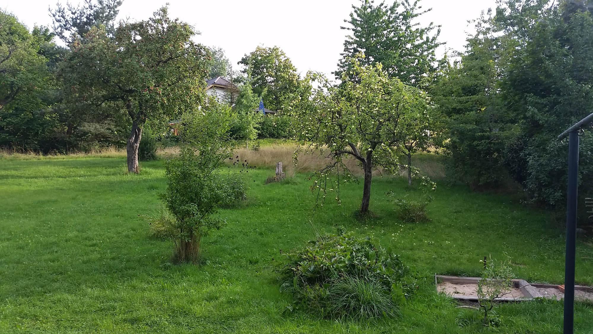 Grundstück Frankenhain